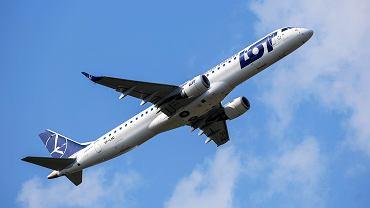 Samolot / zdjęcie ilustracyjne
