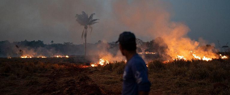 Amazonia płonie. Brazylia wysyła wojsko, Tusk oferuje pomoc, ale jest i ostrzeżenie