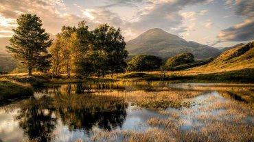 """Wyróżnienie w kategorii """"pejzaż klasyczny"""" wybór jurora Russa O'Conenella - fot. Chris Shepherd - n/z: """"Stary człowiek i drzewa"""", Kelly Hall Tarn, Cumbria, Anglia"""