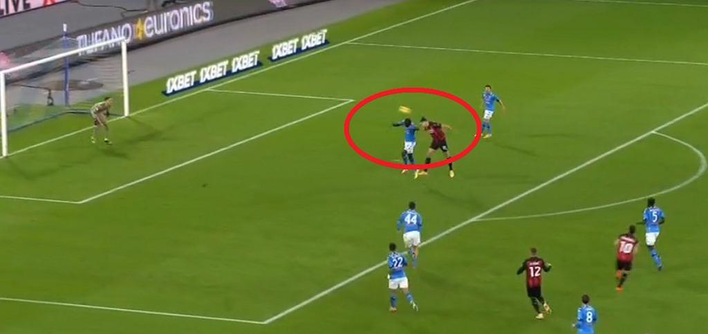 Zlatan Ibrahimović strzela gola
