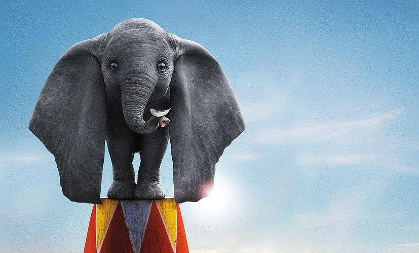 'Dumbo' w kinach!