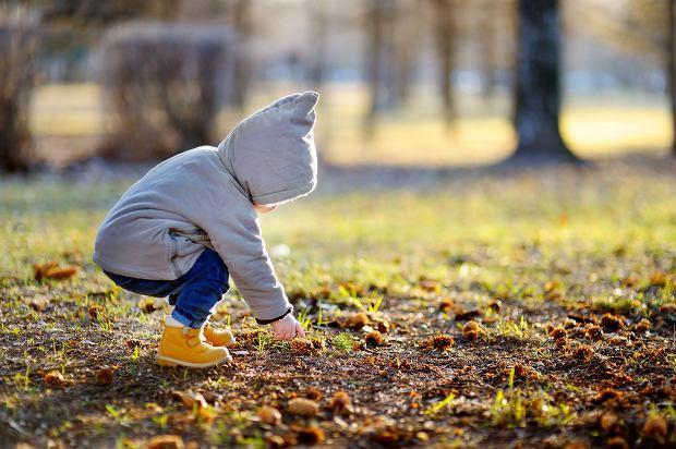 Niedobór wapnia i witaminy D u dziecka? Przeczytaj i dowiedz się jak do tego nie dopuścić