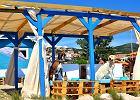 Na plaży zbudowali bar dla psów. Menu? Mrożona herbata i specjalne piwo