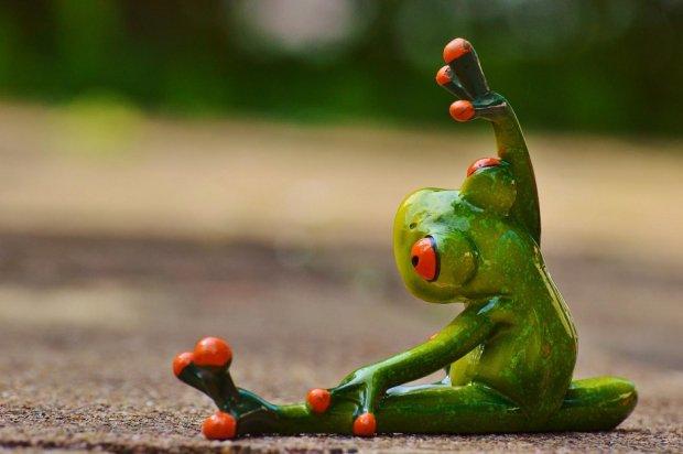 Telefon będzie uporczywie przypominać o gimnastyce /fot. Pixabay.com CC0