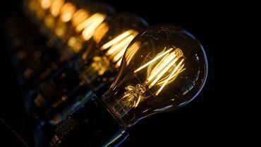 prąd, żarówki (Zdjęcie ilustracyjne)