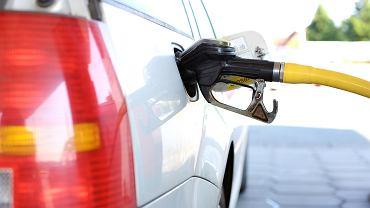 Google Maps ma nową funkcję. Aplikacja sprawdza ceny paliwa na konkretnych stacjach (zdjęcie ilustracyjne)