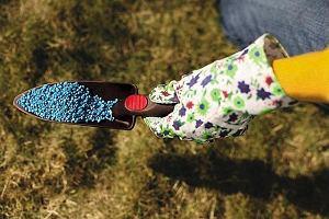 Wiosenne porządki - czas na pielęgnację trawnika