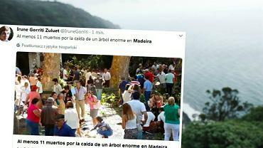 Drzewo przygniotło pielgrzymów na Maderze