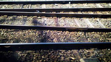 Tory kolejowe - zdjęcie ilustracyjne