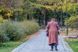 Nasze emerytury coraz gorzej oceniane. Polska w trzeciej dziesiątce państw europejskich