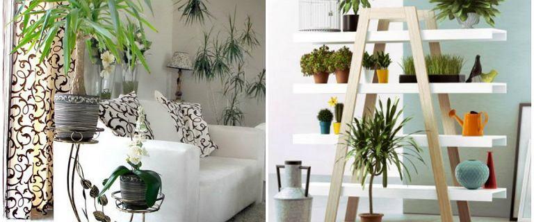 Kwietnik - idealna ozdoba każdego mieszkania!