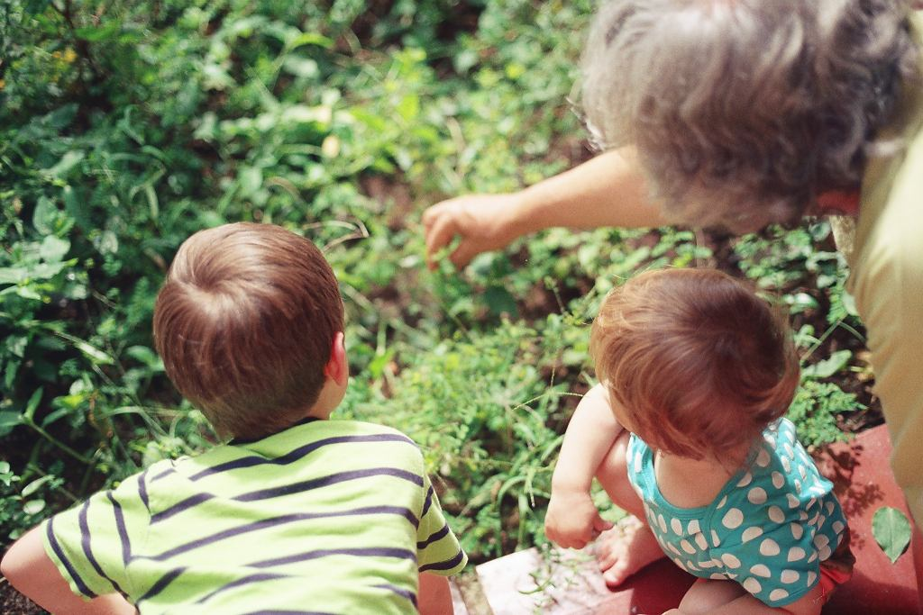 dzień babci i dziadka (Zdj. ilustracyjne)
