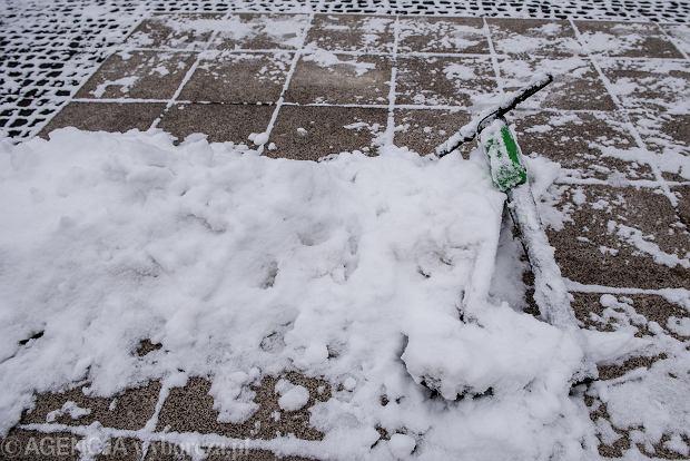 Zdjęcie numer 53 w galerii - Wrocław pod śniegiem. Zobacz zimowe zdjęcia z centrum miasta [FOTO]