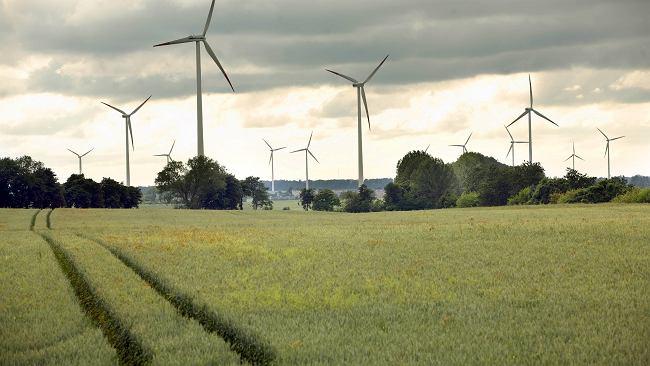 Michał Sołowow inwestuje nie tylko w atom. Planuje farmy wiatrowe na Bałtyku