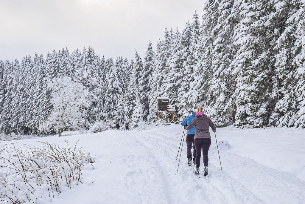 Kiedy w Polsce skończy się zima?