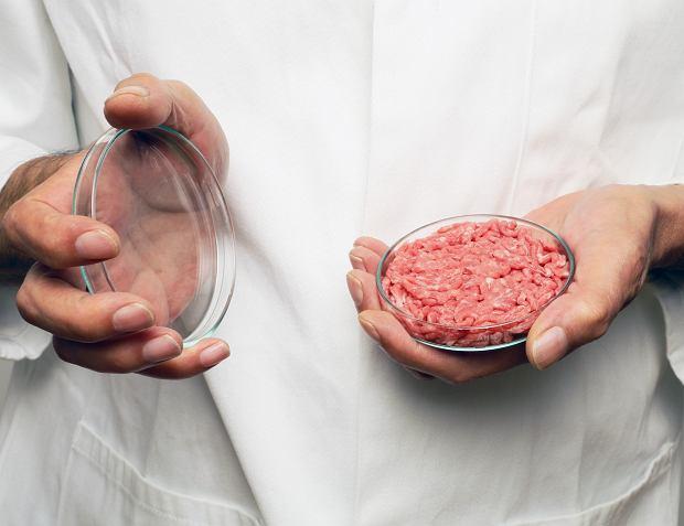 Rewolucja w jedzeniu. Mięso z in vitro trafi na stoły. Wyprodukujemy kawałki bez hodowli całego zwięrzęcia