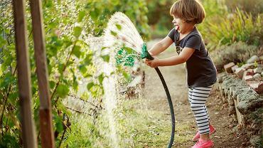 Rodzinne ogródki działkowe to dla dzieci miejsce idealne