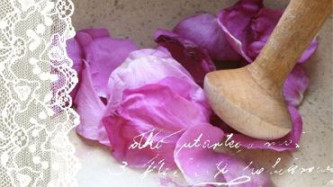 """""""Rose Petal Jam: Stories & Recipes from a Summer in Poland"""""""
