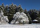 Jesienny i zimowy jogging