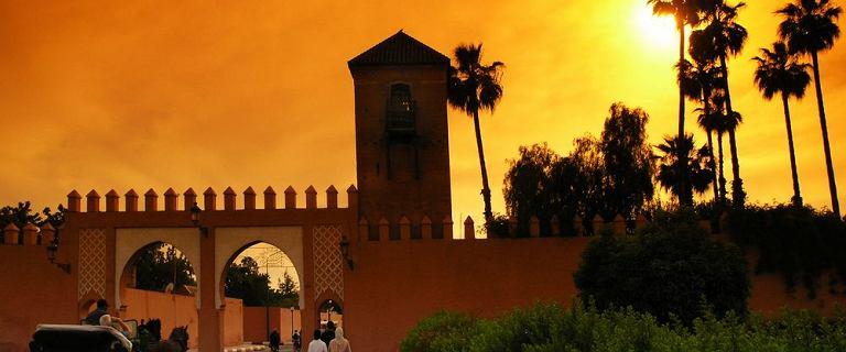 Gdzie wybrać się latem 2020? Podpowiadamy! Skorzystaj z najlepszych ofert do Maroka, Egiptu i Turcji