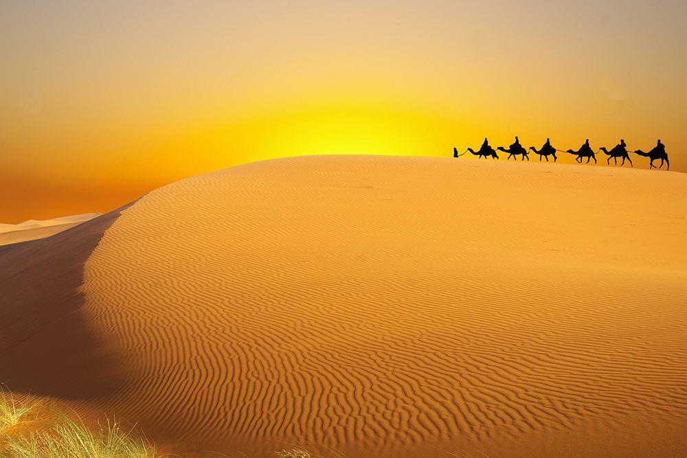 Tunezja wycieczki, Sahara