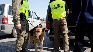 Straż graniczna (zdjęcie ilustracyjne)