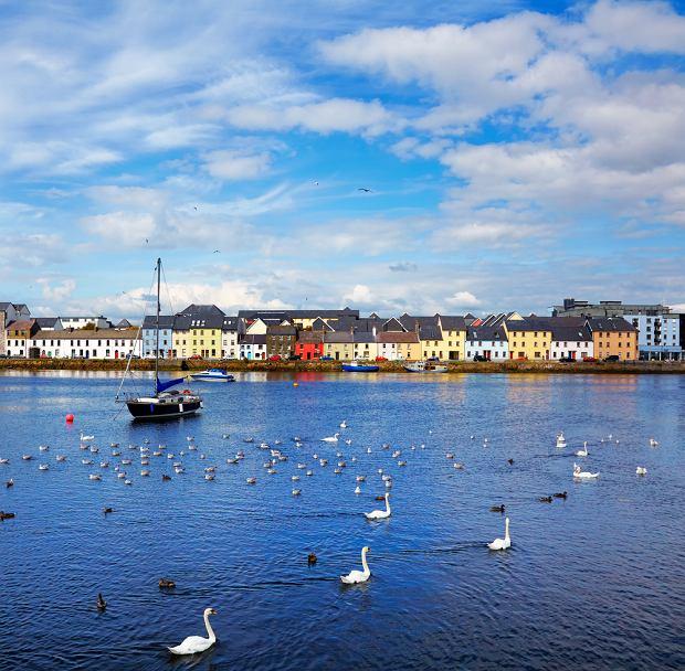 Galway, Irlandia. Galway to miasto w zachodniej Irlandii, stolica hrabstwa Galway. Galway to bajecznie położone miasteczko. Od południa i zachodu Galway oblewają wody zatoki o tej samej nazwie. Na północ od miasta znajdują się torfowiska Connemary, a na wschód - wsie wśród zielonych pastwisk. W wąskich uliczkach Galway stoją szeregi jedno- i dwupiętrowych kamieniczek. Kolorowe witryny pubów, restauracji i sklepów zachęcają do zatrzymania się tu na dłużej.
