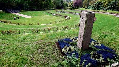 Cmentarz dla prawdziwego kibica