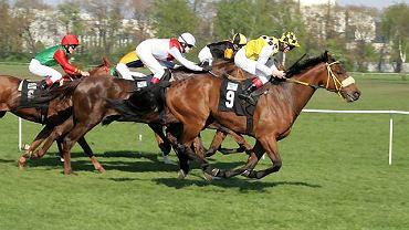 Wyścigi na Torze Wyścigów Konnych na Służewcu