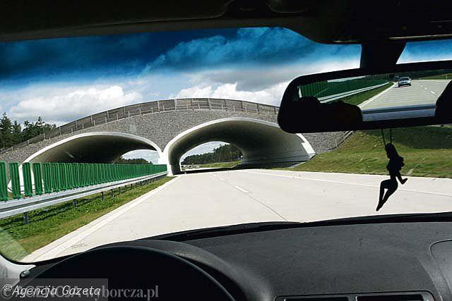Jazda lewym pasem pustą autostradą to polski standard. Nie jest żadną tajemnicą, że to nie jest ani bezpieczne, ani legalne