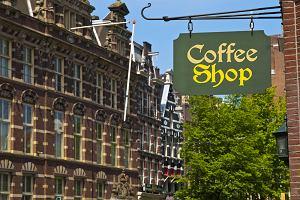 Holandia kuchnia