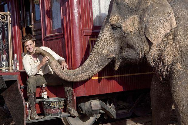 Woda dla słoni - kadr z filmu