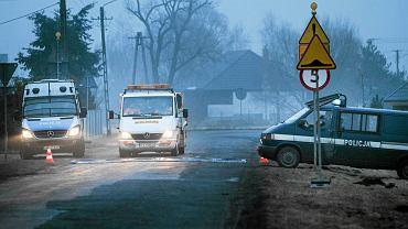 Kontrole w Bolesławcu koło Poznania. Tam ptasią grypę stwierdzono na fermie indyków