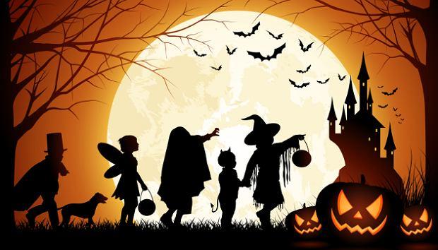 Coroczna mroczna maskarada zbliża się wielkimi krokami. Wybór stroju na Halloween nie pozwala zasnąć niejednej osobie. Chcesz tego dnia wyglądać obłędnie, ale nieprzerażająco? Nie masz pomysłu na stylizację, a w wypożyczalni z kostiumami został tylko strój Świętego Mikołaja? Do Halloween pozostał jeszcze tydzień, więc zainspiruj się przebraniami gwiazd wielkiego formatu i stwórz niepowtarzalny kostium. Jeżeli nie chcesz tego dnia spotkać innej osoby ubranej dokładnie tak jak Ty, mamy dla Ciebie coś wyjątkowego. Z myślą o Tobie przygotowaliśmy zestawienie najciekawszych kostiumów ze świata show biznesu, dzięki niemu bez problemu stworzysz stylizację za pomocą rzeczy, które masz w szafie. Zombie i wiedźmy są passe, sprawdź co teraz jest na topie!
