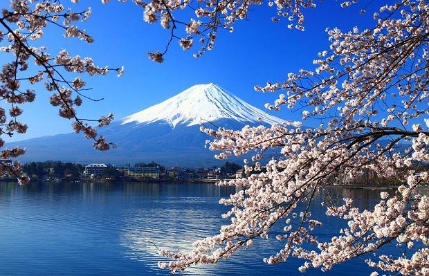 Dokąd jechać w pierwszą wiosenną podróż? Polecamy 13 pachnących i słonecznych miejsc