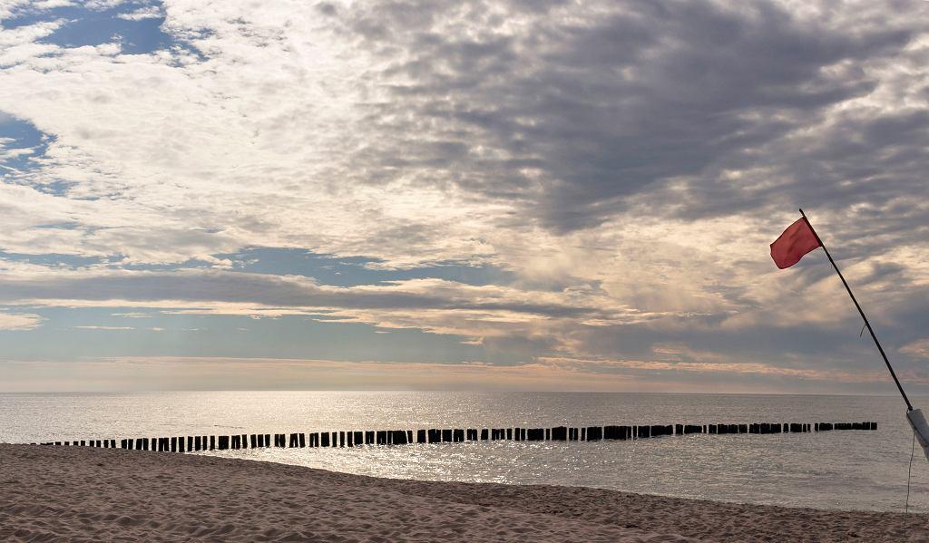 Dąbki nad morzem. Nieopodal znajduje się plaża Bobolin. Zdjęcie ilustracyjne, aliferous99/shutterstock.com