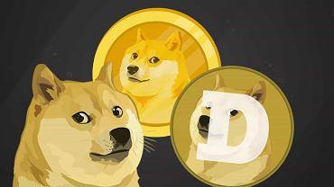 Dyrektor Goldman Sachs rzucił pracę. Zarobił miliony na kryptowalucie Dogecoin (zdjęcie ilustracyjne)