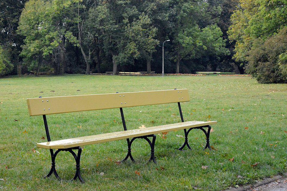 Nowe rośliny w Ogrodzie Saskim, nowe ławki w parku