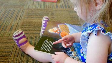 Książki dla 2-latków - po jakie pozycje warto sięgnąć? Zdjęcie ilustracyjne