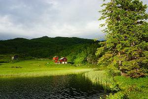 Hytta - własna chata w lesie to spełnienie marzeń, ale luksusowa hytta trąci narodową zdradą