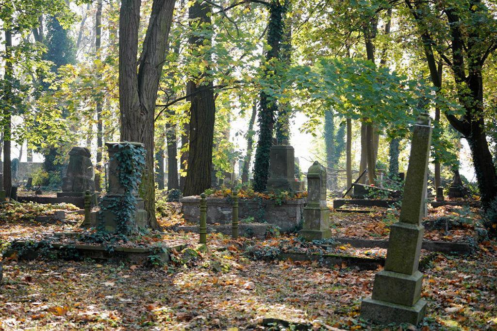 Wszystkich Świętych 2019. Spacer po płockich cmentarzach