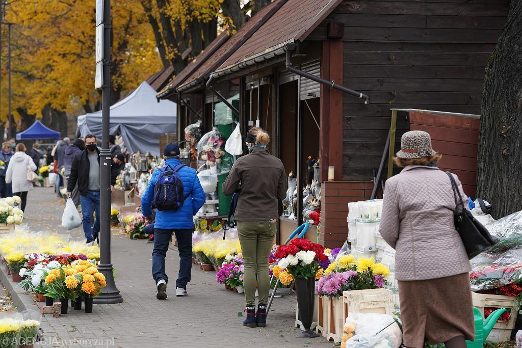 Maksymalnie 11 zł za doniczkę. Tyle rząd chce dać sprzedawcom kwiatów przy cmentarzach