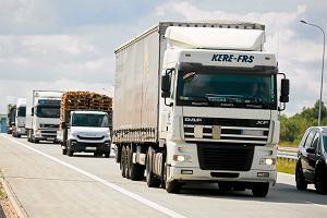 """Spór o podwyżki dla kierowców. Przewoźnicy lamentują, że plany rządu """"zagrożą rozwojowi i istnieniu branży"""""""
