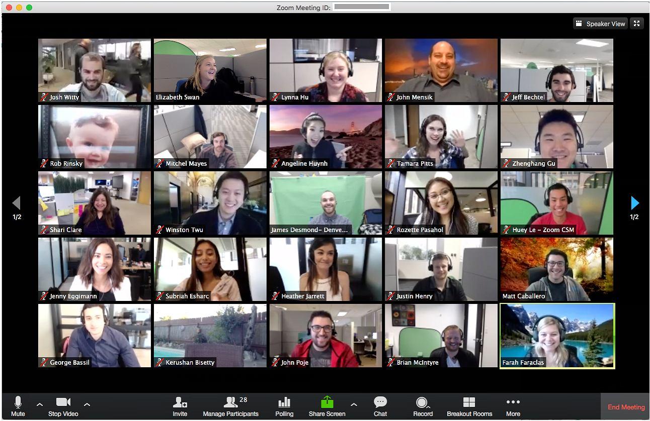 Microsoft Teams nie działa? Aplikacje które mogą go zastąpić to m.in. Google Hangouts czy Zoom | Technologie na Next Gazeta