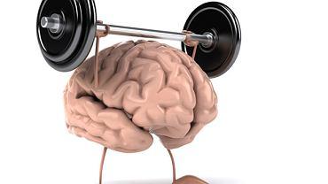 Ćwiczenia: zaprogramuj mózg na sukces