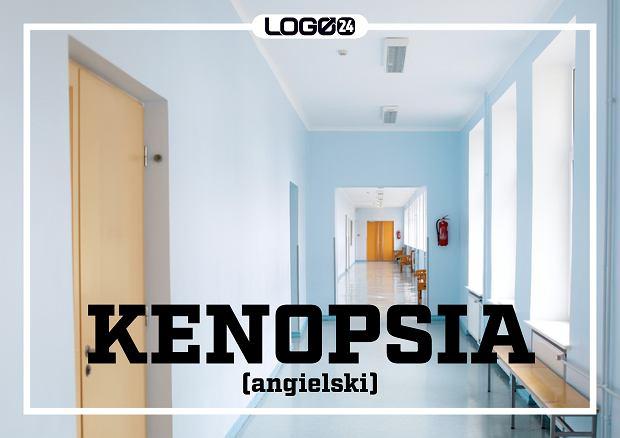 Kenopsia (angielski) - oznacza przedziwne uczucie, gdy jesteśmy sami w miejscu, gdzie zawsze przebywa tłum ludzi.