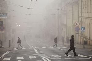"""Przez smog stajemy się głupsi - i to dosłownie. Można się """"cofnąć w rozwoju"""" nawet o kilka lat. Nowe badania"""