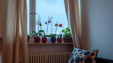 Grube zasłony na oknach mogą sprawić, że w mieszkaniu będzie chłodniej