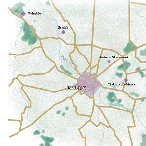 Kalisz i jego okolice