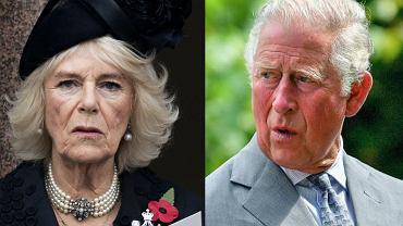 """Australijczyk podaje się za syna księcia Karola i księżnej Camilli. """"Moja struktura twarzy została wnikliwie przeanalizowana"""""""